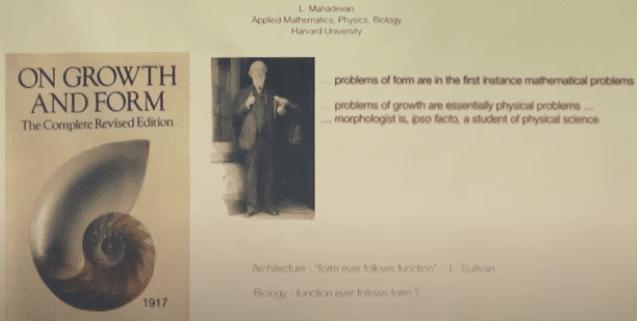 Morphogenesis: Geometry, Physics and Biology