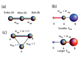 Asymmetric network connectivity using weighted harmonic averages