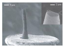 Nanopottery: coiling of electrospun polymer nanofibers