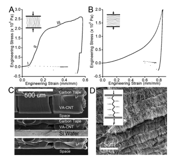 Cooperative adhesion and friction of compliant nanohairs