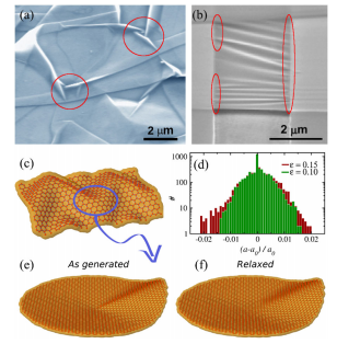 Geometry, mechanics and electronics of singular structures in graphene