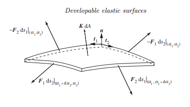 Confined elastic developable surfaces: cylinders, cones and the elastica