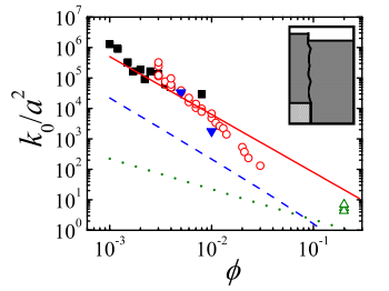 Gravitational collapse of colloidal gels