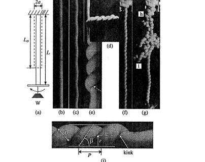 Solenoids and Plectonemes in stretched and twisted elastomeric filaments,