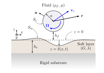 Rotation of an immersed cylinder sliding near a thin elastic coating