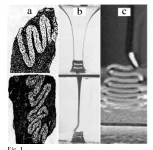 Folding of viscous filaments and sheets