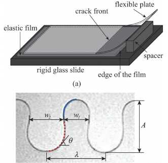 A geometric model for the periodic undulation of a confined adhesive crack
