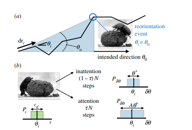 Optimal switching between geocentric and egocentric strategies in navigation