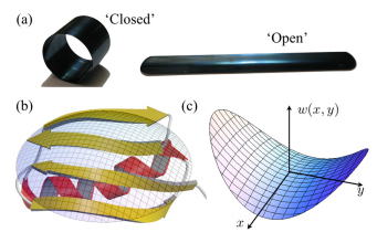 Statistical mechanics and shape transitions in microscopic plates