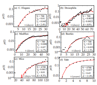 Aging in complex interdependency networks
