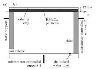 Dissolution-driven convection in a Hele-Shaw cell