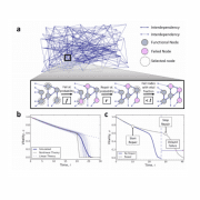 Optimal control of aging in complex networks