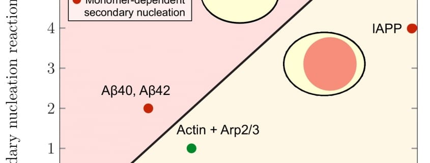 Spatial control of irreversible protein aggregation